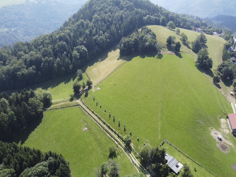 deer farm Gut Jägerhof