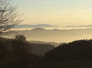 Landschaft Gut Jägerhof