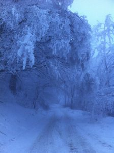 Winter Gut Jägerhof