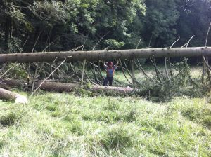 Holzarbeiten am Gut Jägerhof